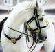 White Horse Honor Guard