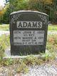 Profile photo:  John Erastus Adams