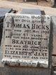Elizabeth Jane Wade <I>Reed</I> Hicks