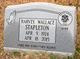Harvey Wallace Stapleton