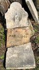 Profile photo:  Jeffersonia <I>Crittenden</I> Allen