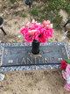 Mary E. <I>Waters</I> Lanthrip