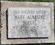 Sr Mary Agnesine Boegel