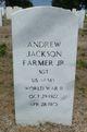 Profile photo:  Andrew Jackson Farmer Jr.