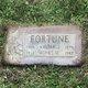 Walter Joseph Fortune