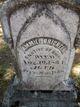 Ammiel Brickell