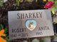 Robert Sharkey