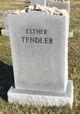 Esther <I>Perr</I> Tendler