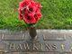 Lloyd Edward Hawkins