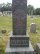 Ann Elizabeth <I>Holman</I> Alleman