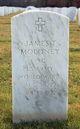James T Moloney