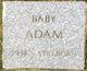 Profile photo:  Baby Adam