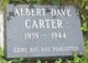 Profile photo:  Albert Dave Carter