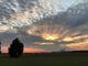 SunsetAngel