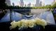Profile photo:  World Trade Center September 11 Memorial