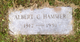 Albert C. Hammer