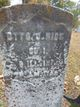 Otto Garfield Rice