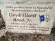Lloyd Elliot Hood Jr.