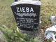 Julie Marie Zieba