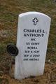 Profile photo: PFC Charles L Anthony
