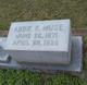 Abbie K Muse
