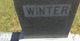 Albert P Winter