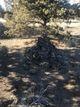 Cooley-Tetherow Meek Cutoff Lone Burial Site