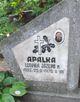 Ludviga Jazepa Apalka