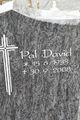 Pal David
