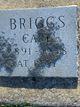Cari Briggs