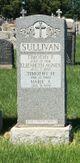 Timothy F Sullivan