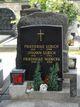 Friedrike Ulrich