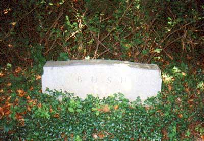 Dorothy Wear Walker Bush 1901 1992 Find A Grave Memorial