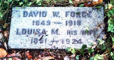 David Force