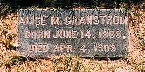 Alice Manetta Ellen <i>Gray</i> Granstrom