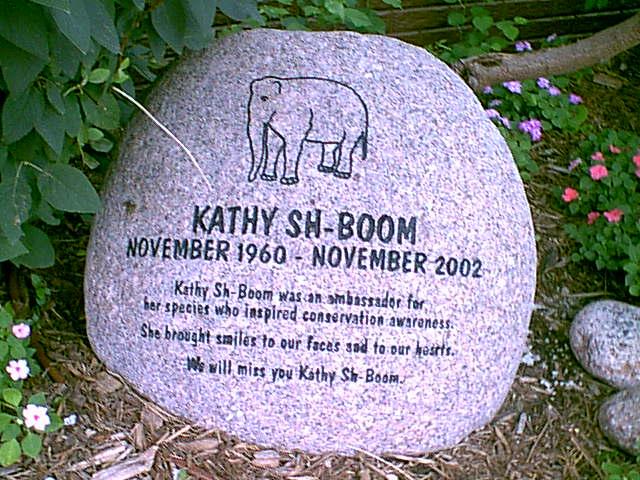 Kathy Sh-Boom