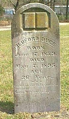 Bluford Blue Duck