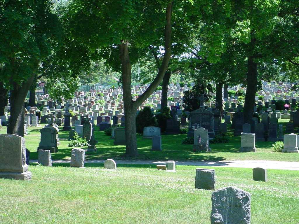 Mount Saint Mary Cemetery