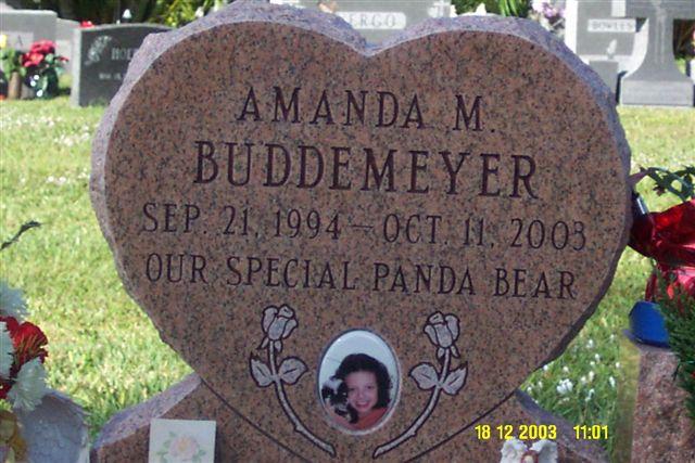 Amanda M. Buddemeyer