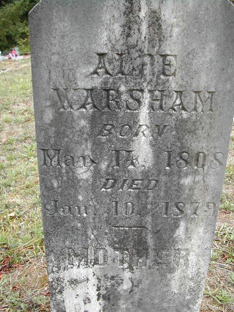 Alce <i>Johnson</i> Warsham