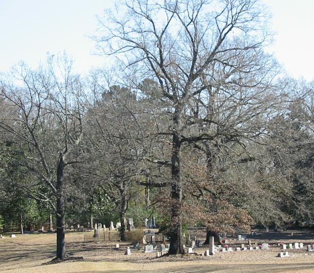 Spring Ridge Cemetery