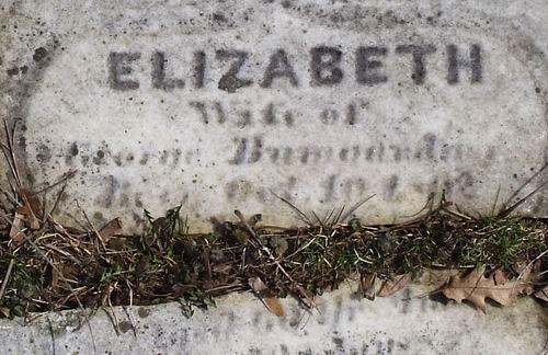Elizabeth <i>Gerberich</i> Bomgardner