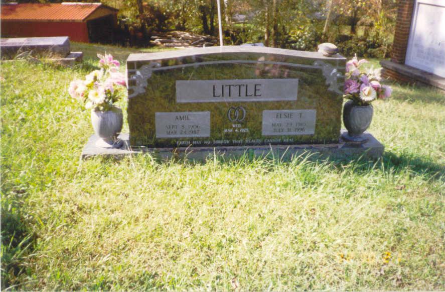 Amil Little