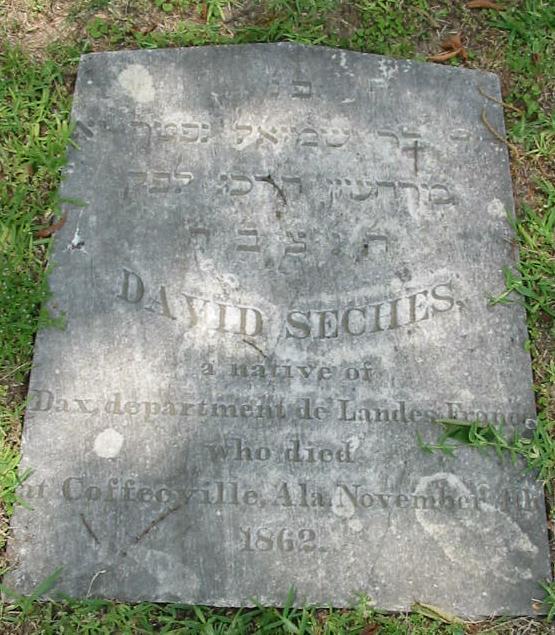 David Seches