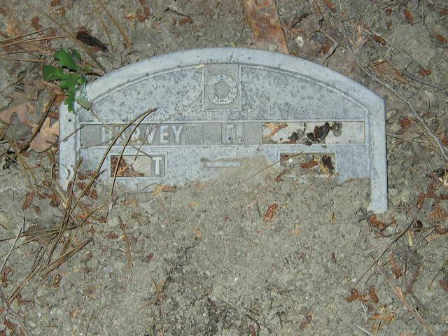 Harvey T.