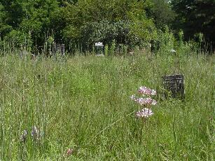 Rochester Cemetery
