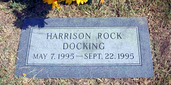 Harrison Rock Docking