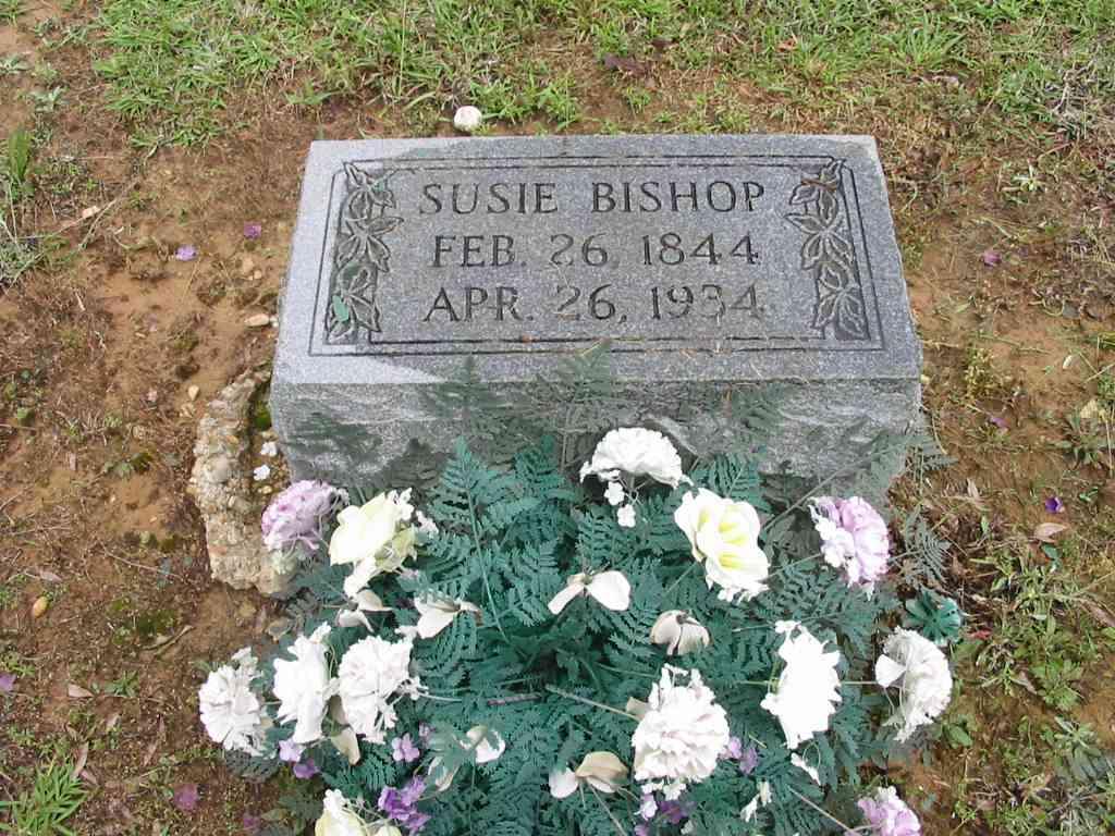 Susan Frances <i>Hannah</i> Bishop