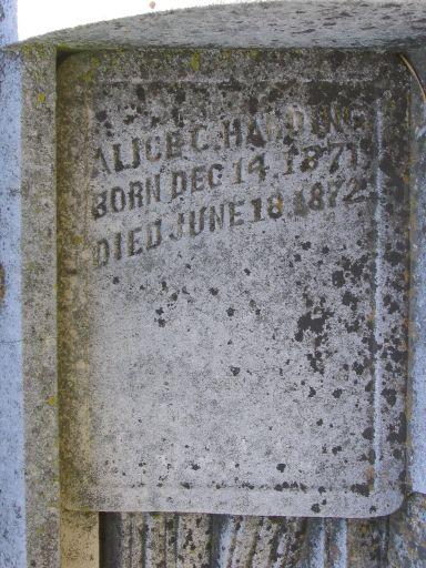 Profile photo:  Alice C. Harding