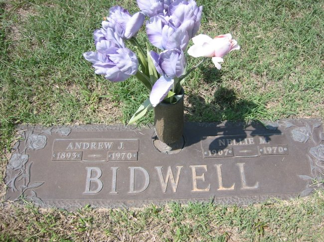 Nellie Madge <i>Wilson</i> Bidwell